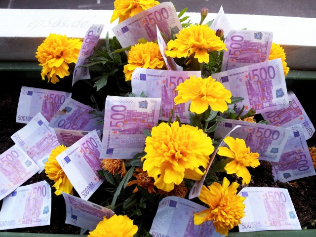 Growing Free Money on Flowers